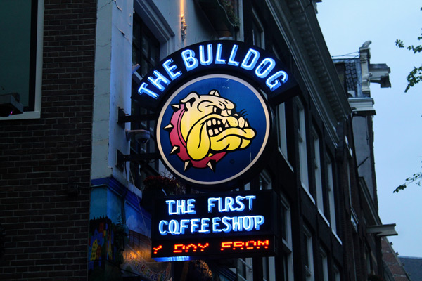 Bulldog Coffeeshop in Amsterdam
